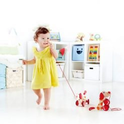 Pull Along Wooden Toys